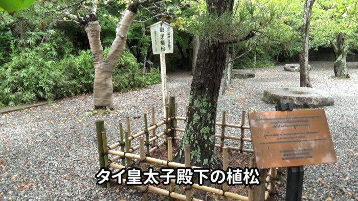 鎌倉大仏(高徳院) タイ皇太子殿下の植松