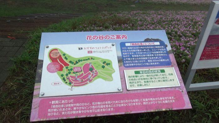 マザー牧場 花の谷の案内看板