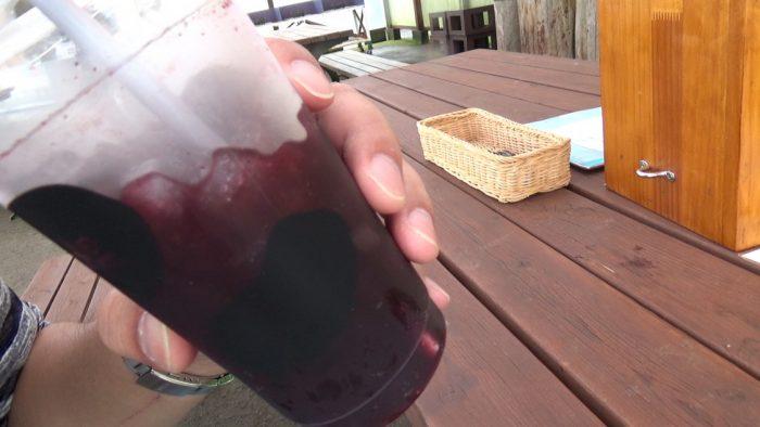 マザー牧場 ブルーベリージュース