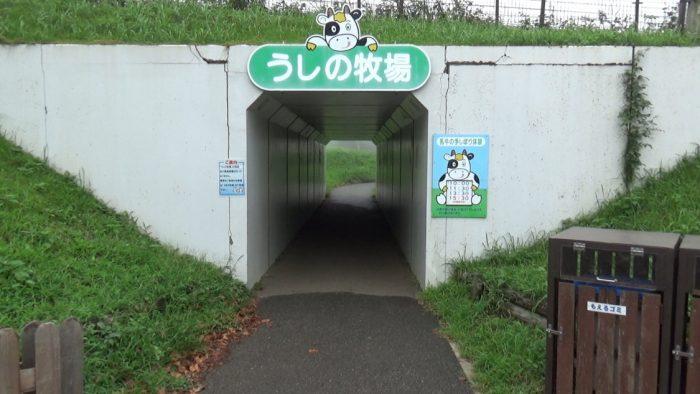 マザー牧場 うしの牧場へのトンネル