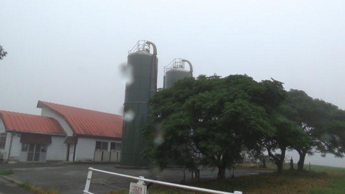 マザー牧場 うしの牧場建物